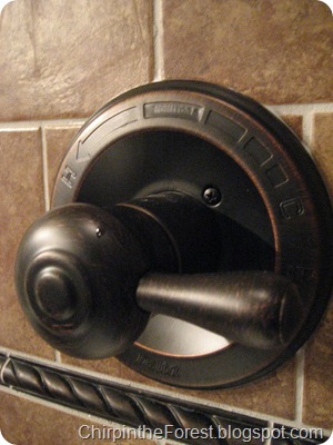 Delta ORB shower fixture