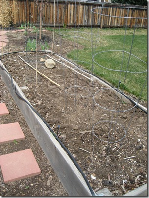 bare veggie garden