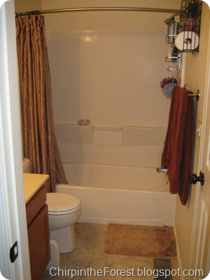 Master Bath Before 1