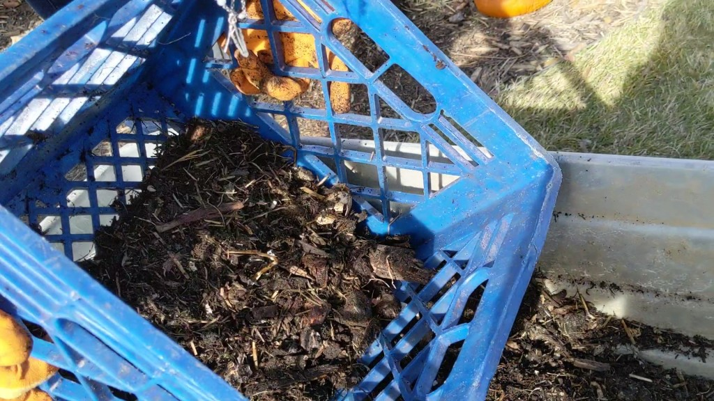 Sift finished compost using milk crate
